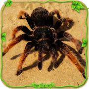 Spider Simulator: Life of Spider‏