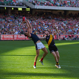 Big Mark by Paul Sarchuk - Sports & Fitness Australian rules football