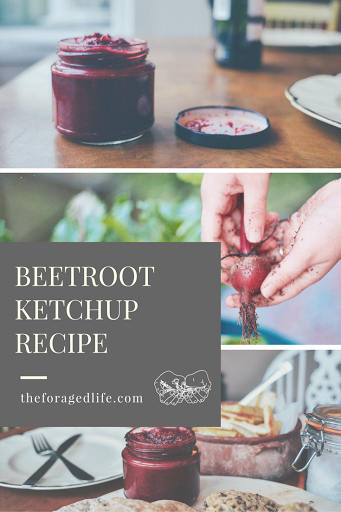 Beetroot Ketchup recipe // Recipes by The Foraged Life