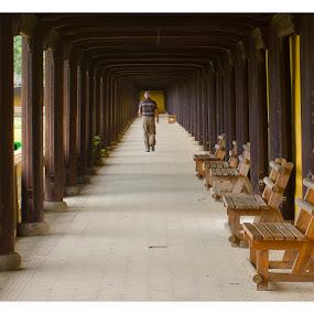 A walk down history by Joydeep Sen Chaudhuri - Travel Locations Landmarks ( hue, citadel, forbidden city, vietnam )