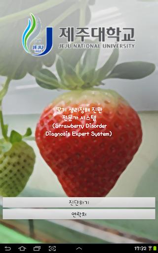 딸기 생리장해 진단 전문가 시스템