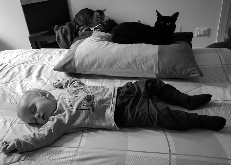 Sonno... vegliato di Nemesys61