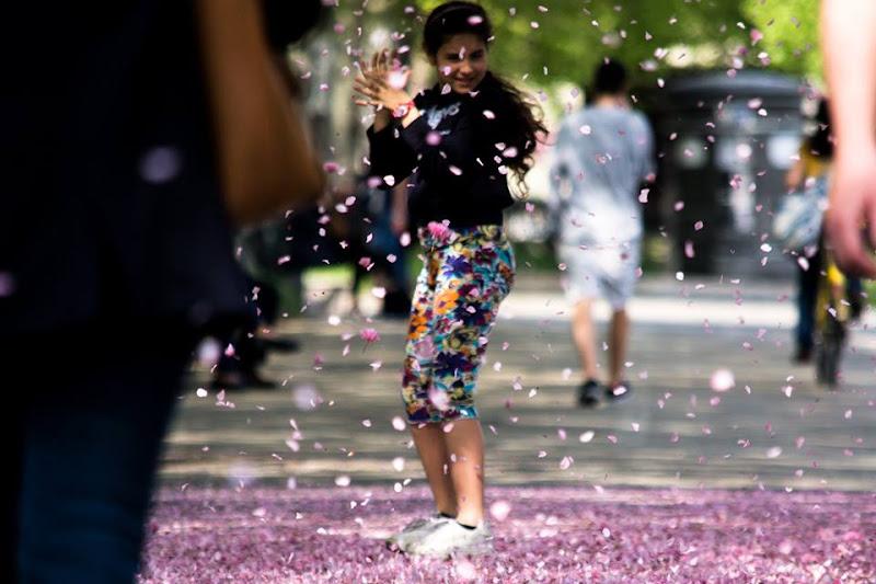 arriva la primavera di marco.tubiolo photography