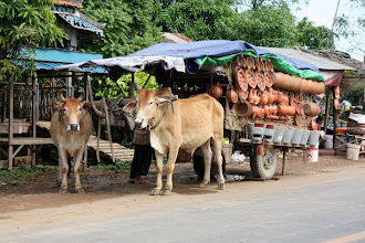 Photo: Year 2 Day 37 - Ox and Cart with Pottery Utensils