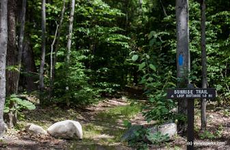 Photo: A short hike on the Sunrise Trail at Fort Dummer by Tara Schatz