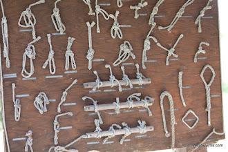 Photo: Knots at Burton Island State Park by Mark & Kim Sweeney