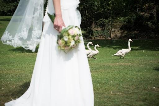 Photographe de mariage Estelle Offroy (estelleoffroy). Photo du 18.04.2015