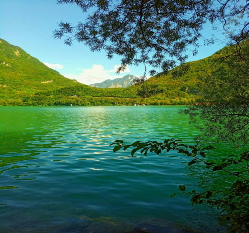Mondo Green di jessica_ammaturo