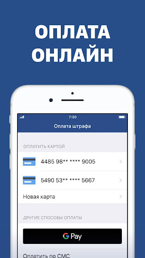 Russian Traffic Fines, View & Pay - screenshot