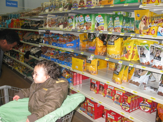 Photo: And more of it!! Here's LA in the cart - he's looking at the fish on the other side of the aisle! :)