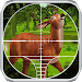 Hunting Forest Animals Icon