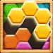 Wood Block Puzzle - Hexa icon