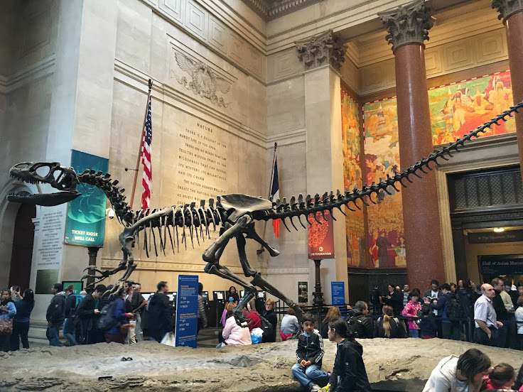 A raptor runs around the main lobby of the AMNH.