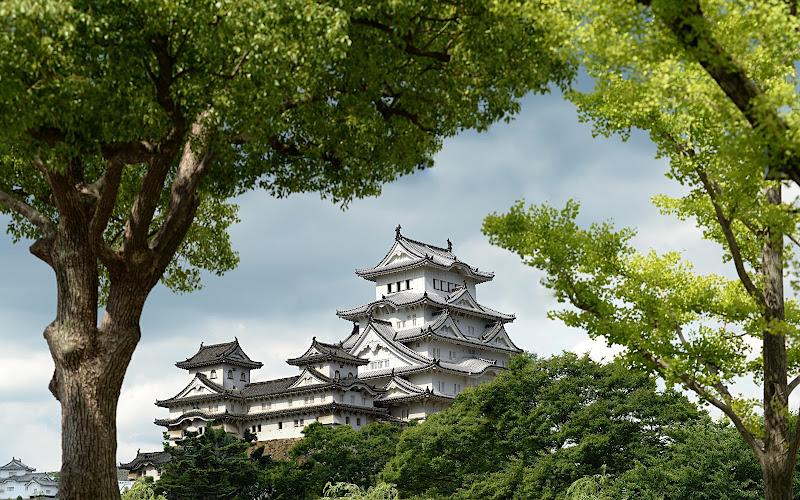 Il castello dell'airone bianco di Dariagufo