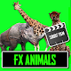 FX Animals for Shortfilm - FX Video Maker APK