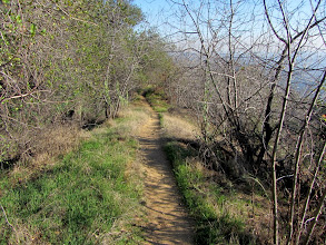 Photo: Heading south on Upper Colby Trail