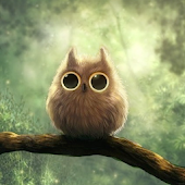 Pretty owls Wallpaper