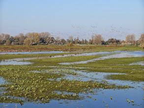 Photo: Blankert richting de Oude Maas