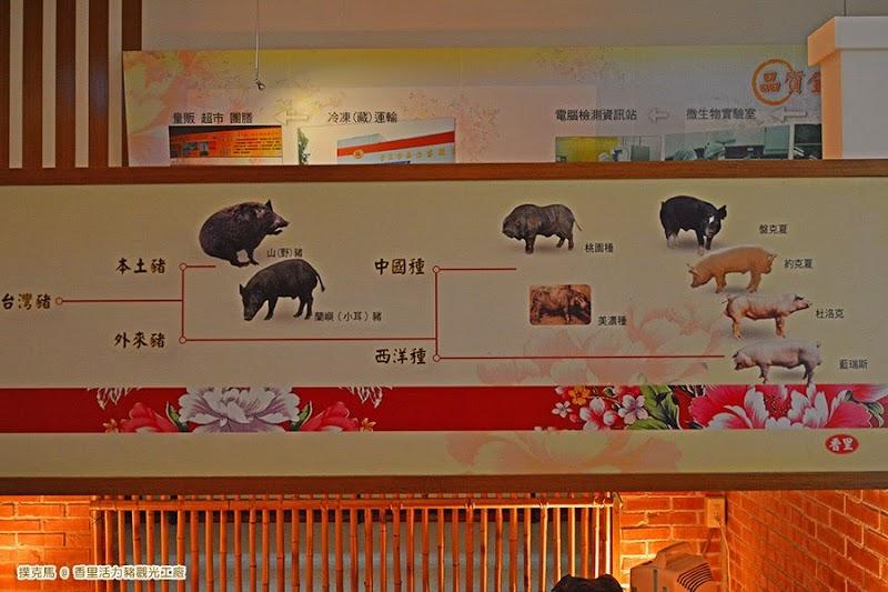 香里活力豬觀光工廠豬隻品種