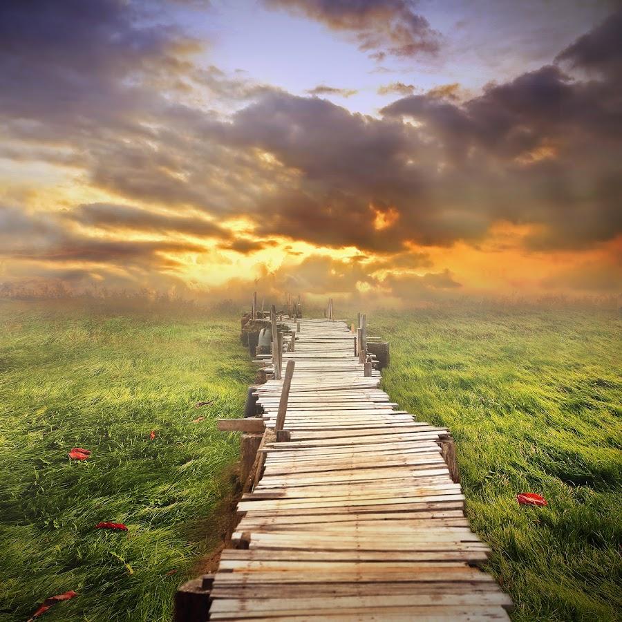 wooden path by Even Liu - Digital Art Places ( photomanipulation, manipulation )