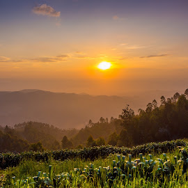 Sunset next Bugarama by Philippe Collette - Landscapes Sunsets & Sunrises (  )