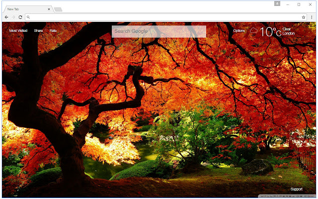 Autumn Wallpaper HD New Tab Fall Themes