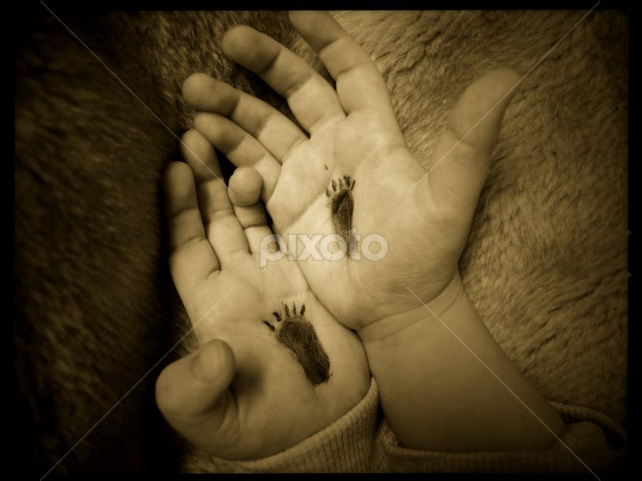 world prematurity day by Rachael Crombie - Babies & Children Hands & Feet ( sepia, hands, prematurity, footprint, baby )