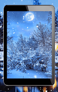 Winter Night Live Wallpaper screenshot 5