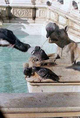76  la fontana.....che sete!! di roxelle