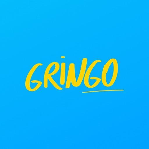 Baixar Gringo - Consulta CNH Multa IPVA DPVAT DSV Débitos para Android