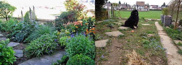 Photo: Garten nach der Besichtigung durch Coraly