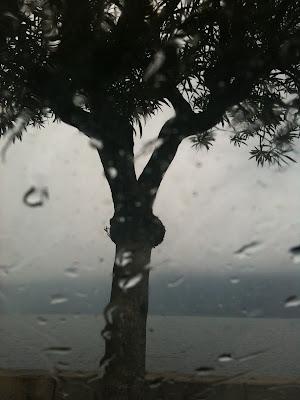 piove sul lago di cristiana suzzi