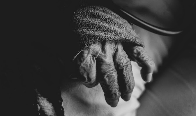 Mani vissute  di federica ambrogio