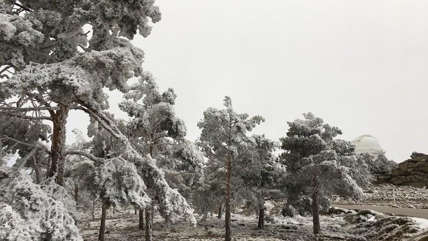 la nieve llegó ya ayer a la zona de Calar Alto (foto de J.A. Fuentes)
