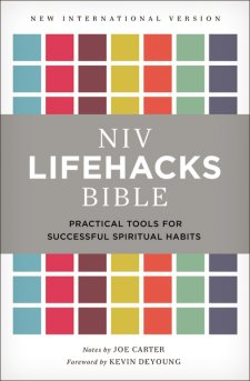 NIV Lifehacks Bibe.cover.jpg