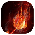 Fiery tulip live wallpaper icon