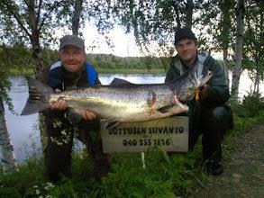 Photo: Tornionjoki lohi 15kg ja väri 027.