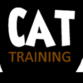 Cat Training Tips And Tutorial
