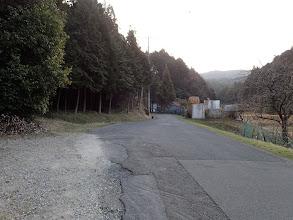 林道付近の路肩に駐車