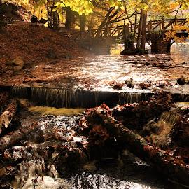 Irmak by Recep Cenbek - Landscapes Weather ( akarsu, köprü, irmak, sonbahar )