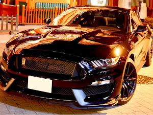 シェルビー GT350 のカスタム事例画像 Black Cobraさんの2020年02月21日07:28の投稿