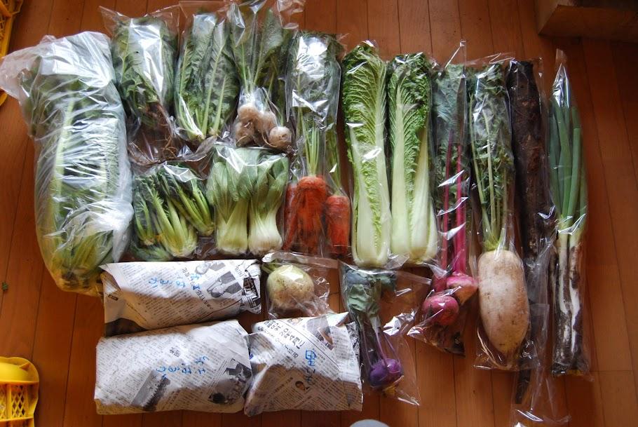 11/30のお野菜セット 特盛のお客様です。
