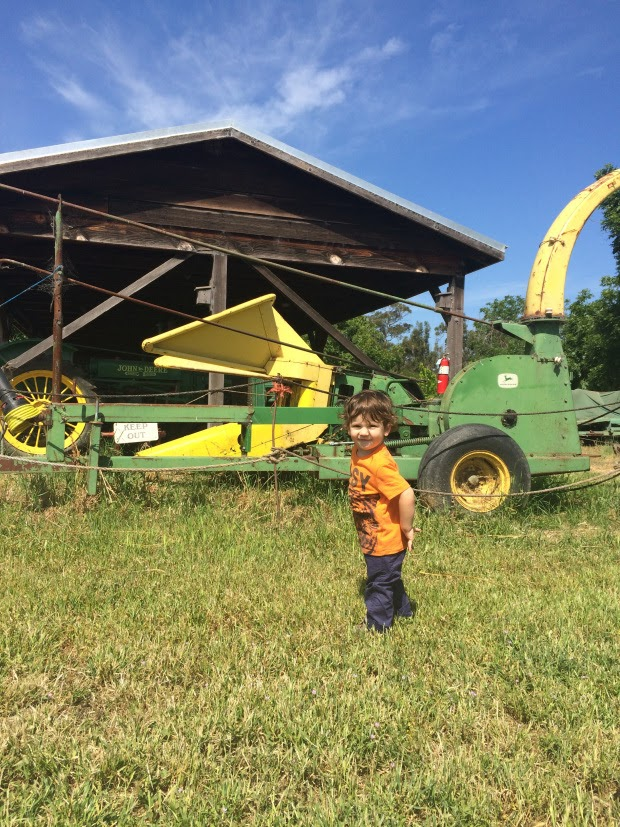 Toddler boy standing in front of farm equipment with barn in background