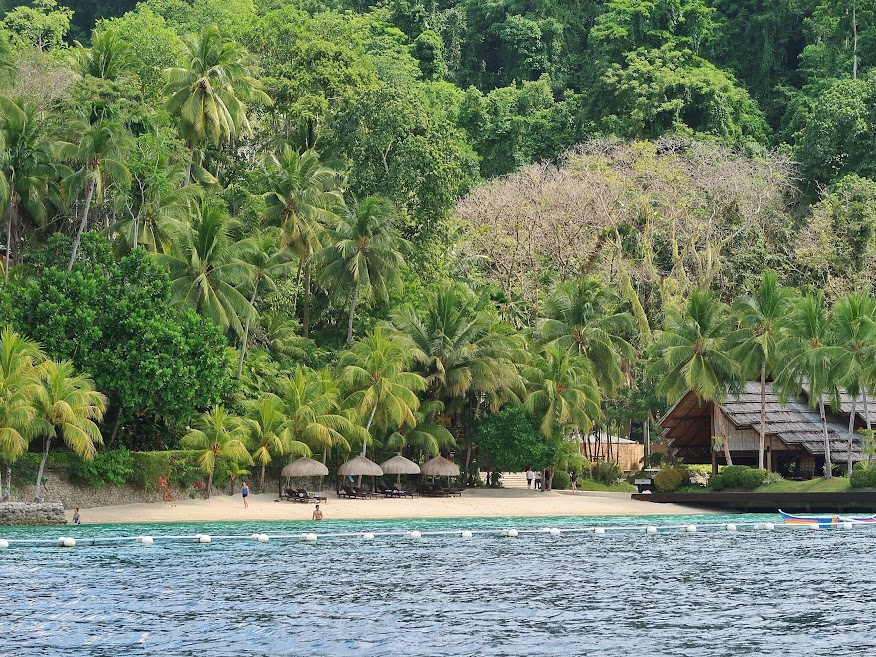 Where to Stay in Samal Island: La Vida Orchard