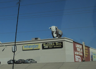 Photo: And... random cattle decor, even on rooftops.
