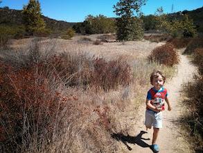 Photo: Finn Runs Canyon Trail