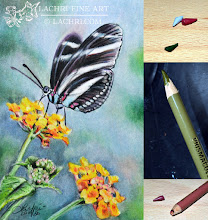 Photo: Review: Prismacolor Premier Colored Pencils http://www.parkablogs.com/node/11930