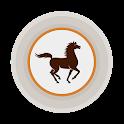Pocket Bank icon