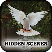 Hidden Scenes - Alleluia Android APK Download Free By Difference Games LLC