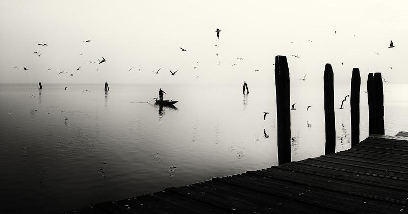 cullato dalla laguna di Giovi18